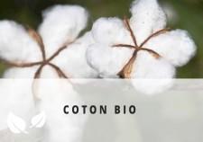 Fleur de coton bio